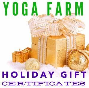 holidaygiftcertificates